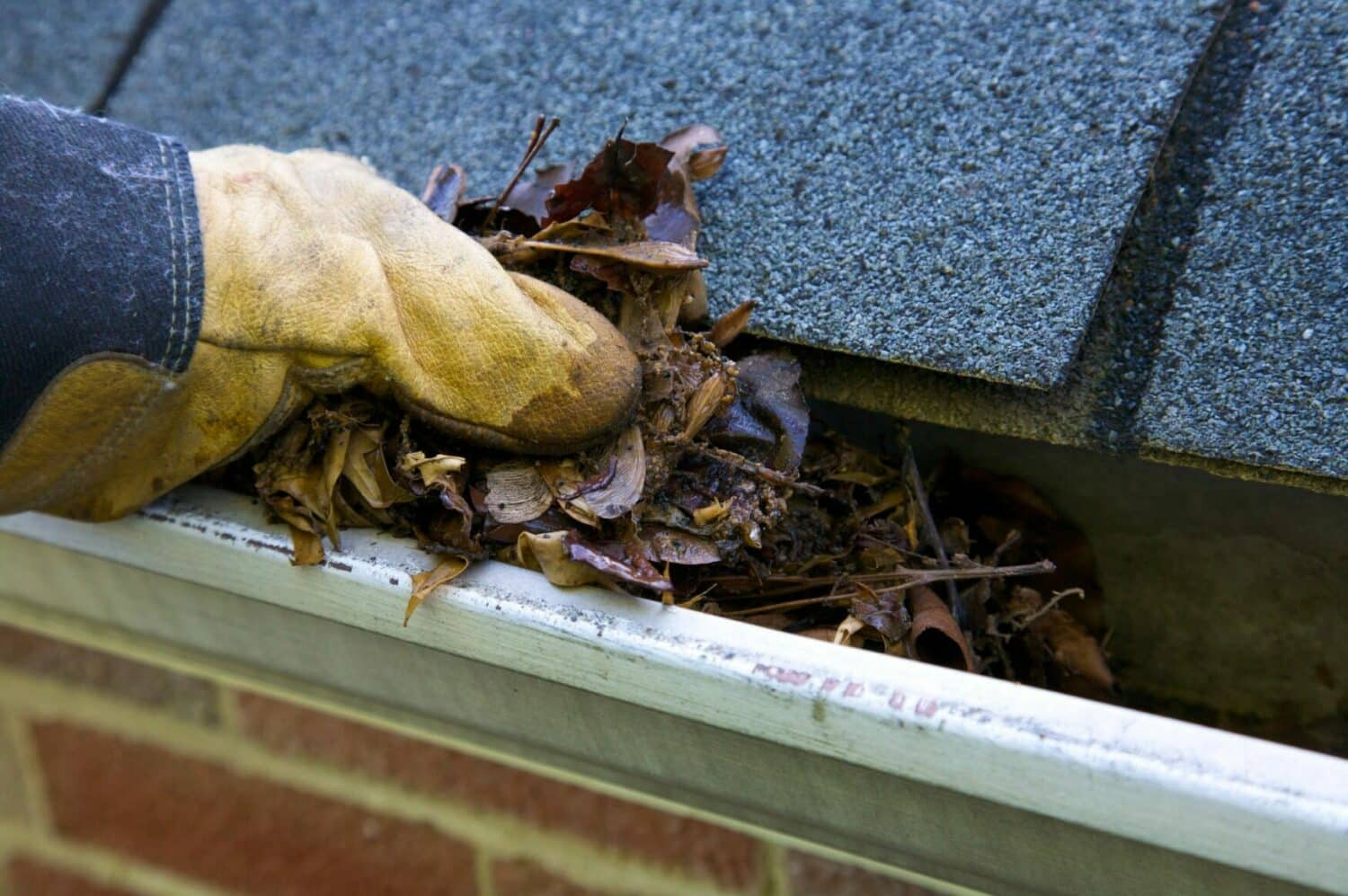 A home in need of new gutter installation in Charlotte, NC